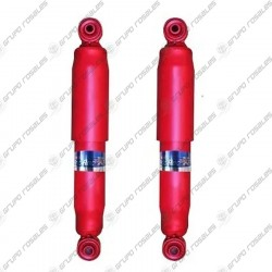 Kit de 2 amortiguadores Fric Rot traseros Fiat Palio Adventure